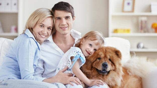 Wills & Trusts dog-young-family Direct Wills Welford-on-Avon